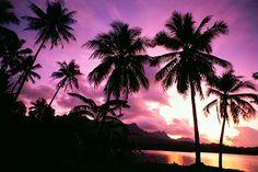 Win A Private Island - Kosrae Nautilus Resort