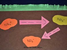 By: Spencer Reid & Ian McConaghy Blk: H Science 10 Nutrient Cycle Project - The Nitrogen Cycle Enjoy (: 6th Grade Science, Science Biology, Middle School Science, Earth Science, Life Science, Science Ideas, Nutrient Cycle, Environmental Chemistry, Nitrogen Cycle