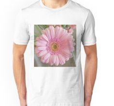 'Winter Cosmos Flower in Pink T-Shirt by ellenhenry Pink Gerbera, Pink Carnations, Bunch Of Flowers, White Flowers, Holland Garden, Floral Photography, Close Up Photos, Green Backgrounds, Pale Pink