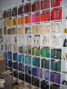 This is so cool! I started doing this with my own bookshelf last year and I hope mine eventually looks this awesome!