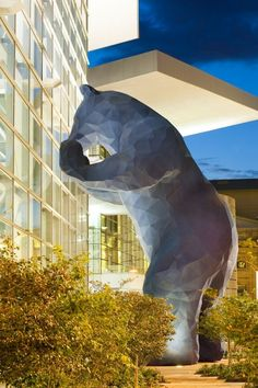 """The big blue bear, or """"Bluey"""" as I like to call him... The bear that looks into the Denver Convention Center windows is actually called """"I See What You Mean"""" by artist Lawrence Argent"""