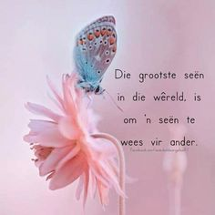 💕 Afrikaanse Quotes, Goeie Nag, Goeie More, Prayer Verses, Special Words, Good Morning Wishes, Religious Quotes, True Words, Lettering