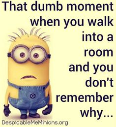 Thursday Minions Funny images (02:33:50 PM, Tuesday 17, November 2015 PST) – 10 pics