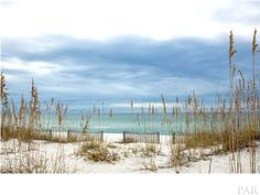 1774 ENSENADA SIETE Pensacola Beach, FL 32561 $639,000 Estimated monthly payment: $3,430.29 Vacant Land Status: Active Sqft: Lot:52X119X115X85X128 Beautiful gulf front lot in an area you could build Ocean front home. Allows weekly rentals.
