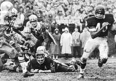 1965 Gale Sayers runs against San Francisco at Wrigley Field. Oakland Raiders Football, Bears Football, Football Team, Alabama Football, Football Photos, Sports Photos, Chi Bears, Best Running Backs, Gale Sayers