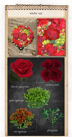 Winter red bouquet recipe