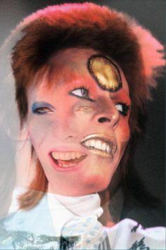 Bowie 8 - Dago fotogallery