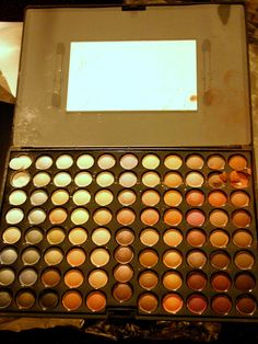 She Likes To Pretend: Coastal Scents 88 Warm Palette Review