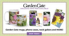 Garden Gate's Best Hostas   Garden Gate Garden Shrubs, Garden Trellis, Garden Gates, Container Plants, Container Gardening, Hosta Care, Build A Terrarium, Newsletter Signup, Evergreen Garden