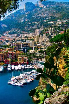 Monaco, Yacht Parking