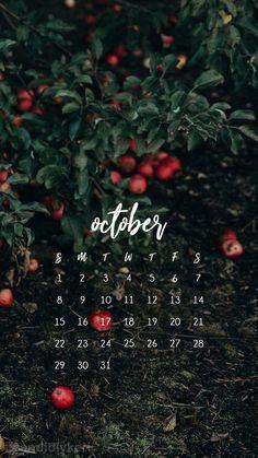 2017_October8M.jpg (1080×1920)
