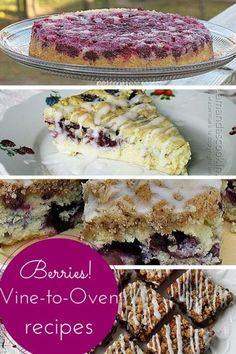 Fresh Berries: Vine to Oven Recipes (photo credit: Amanda Formaro, Amanda's Cookin')