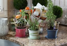 #DIY #herb #garden Create potted plants using recycled cream cheese containers! not2shabbey,com
