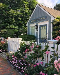 🌟Tante S!fr@ loves this📌🌟Roses on seaside cottages //