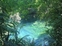 Mother Earth, Mother Nature, Beautiful World, Beautiful Places, Estilo Tropical, Nature Aesthetic, Aesthetic Pictures, National Parks, Scenery