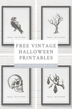 Free printable vintage Halloween wall art - HalloweenIf you're looking for cheap Halloween decorating ideas, check out these creepy free Halloween printables. Designed as printable wall art, these black and white printables feature hand-drawn Hallowe Retro Halloween, Halloween Tags, Modern Halloween Decor, Cheap Halloween Decorations, Halloween Prints, Halloween Wall Decor, Halloween Halloween, Spooky Decor, Halloween Pumpkins