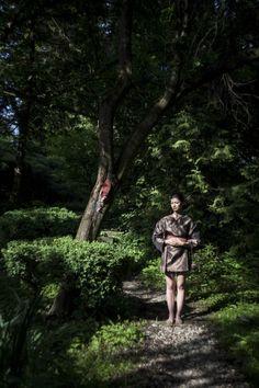 Japanese garden Japanese, Website, Garden, Photography, Garten, Photograph, Japanese Language, Lawn And Garden, Fotografie