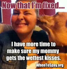 Now that I'm #fixed....  (#spay #neuter)