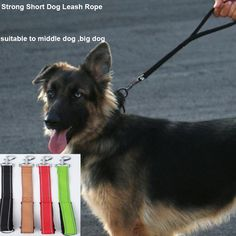 Find More Leashes Information about New design Dog Training Short Leash Rope, Pet Dog Short Rope Training Rope with Reflection strap Free Shipping CL106,High Quality rope handle shopping bags,China rope events Suppliers, Cheap rope tension from Household Products wholsale and Retail on Aliexpress.com