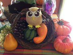 Owly loves October, the month of harvest! Day 265 of #yearofowly #lifeofowly