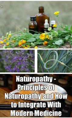 . Naturopathy - Principles of Naturopathy and How to Integrate With Modern Medicine