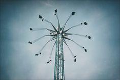 Fly © Nicholas T