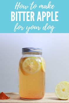 How to make your own bitter apple spray to prevent your dog from licking or chewing: This is SO easy it feels like cheating to call it a DIY! Apples For Dogs, Dog Deterrent Spray, How To Make Bitters, Bitters Recipe, Lemon Diet, Homemade Dog Treats, Dog Chews, Pet Health