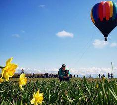 Oh hi there Spring #woodenshoetulipfestival #hellosunshine #iheartoregon - ExplorersAreWe.com