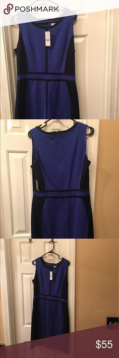 New with tags black and blue dress. New York and Company great for the office! Dresses Midi