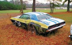 Dodge Challenger,,,,ill take it how much,,it can be restored