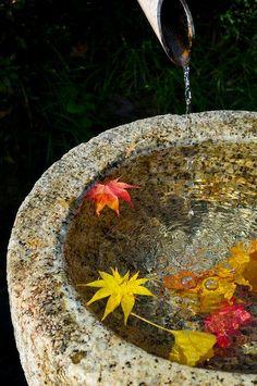 La #photo du jour : fraîcheur d'automne... Sorane Plus de photos sur Pinterest : https://fr.pinterest.com/JournalduJapon/life-style-made-in-japan/ #Japan