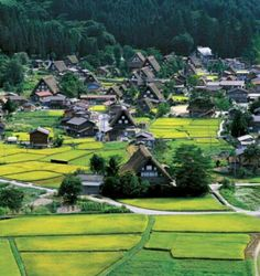 The Shirakawa -go Village in Japan