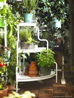 It's time to bring out that green thumb! Use the SOCKER IKEA plant stand to create an elegant presentation of flowers, plants or fresh herbs. Porch Garden, Balcony Garden, Garden Web, Hacks Ikea, Ikea Outdoor, Indoor Outdoor, Outdoor Ideas, Outdoor Living, Corner Plant