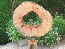 """Innen Treibholz Skulptur """"Baumscheibe"""" handmade"""