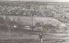Santa Clara Valley, CA from Blossom Hill Rd in San Jose looking toward Los Gatos, CA many years ago