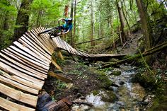 More awesome wood mountain biking trails off the Sunshine Coast, BC - Dan Barham Mtb Trails, Mountain Bike Trails, Sunshine Coast Bc, Bicycle Decor, Bicycle Art, Moutain Bike, Bike Parking, Road Bikes, Bike Life