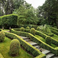 Wet garden and green. Love rain once in a while. Topiary Garden, Lush Garden, Terrace Garden, Green Landscape, Garden Landscape Design, Garden Landscaping, Formal Gardens, Outdoor Gardens, Evergreen Hedge