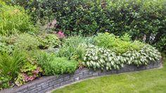 Kukkapenkki Outdoors, Garden, Plants, Garten, Lawn And Garden, Gardens, Plant, Outdoor Rooms, Gardening