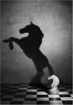 #Black&White Photography|Victoria Ivanova