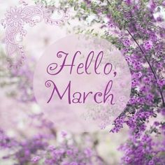 ... and it's raining again ! Hello March !!!!