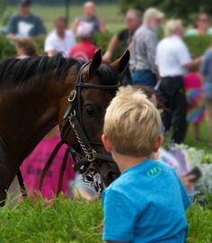 Who's watching whom? Thoroughbred racehorse checking out a young fan at Canterbury Park in Minnesota