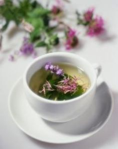 BEE BALM TEA:In order to prepare this herbal tea, you may use fresh or dried leaves  flowers of bee balm plant.For a cup of bee balm tea: 1 cup of boiling water,1 tbsp of fresh or dried bee balm herb (leaves  flowers),a teapot or strainer.Place the herb in a tea strainer or tea ball  put it in the cup.Add boiling water  allow the tea to steep for 10 minutes. After:remove the tea ball/strainer  add any natural sweetener (optional).   SEE: http://www.buzzle.com/articles/bee-balm-tea.html