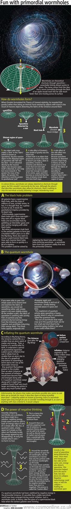 Fun With Primordial Wormholes