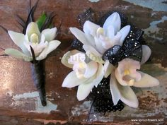 homecoming flower ideas | This black and white set features orchids with flash ribbon and the ...