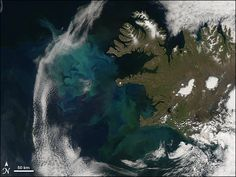 The bright blue and green colors in this #satellite image show the North Atlantic Bloom, a massive swath of phytoplankton that unfolds each spring in the North Atlantic Ocean. [Photo credit: NASA]