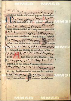 Antiphonarium Cisterciense. - Antiphon Queen Elizabeth Richensa. Date 1317 Sig: R 600 Folio 178r