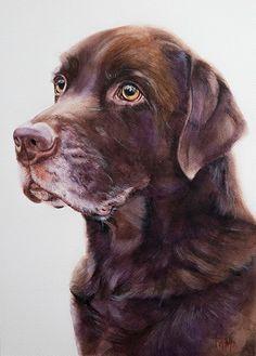 Labrador Boy, watercolor Artist Tanja Kooymans
