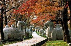 Xiaoling Tomb of Ming Dynasty, Nanjing, China