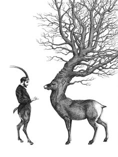 Dan Hillier - at the edge of the woods