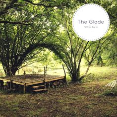 The beautiful Glade at Wilton Farm : http://www.wiltonfarm.co.uk/the-glade-slipway/